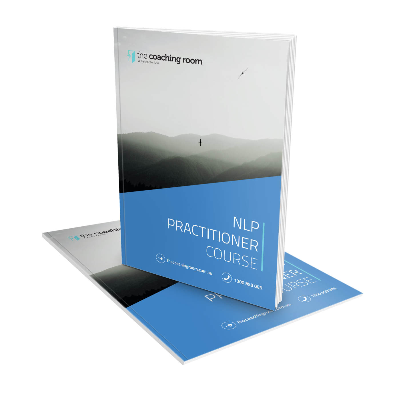 NLP Practitioner_cover.png