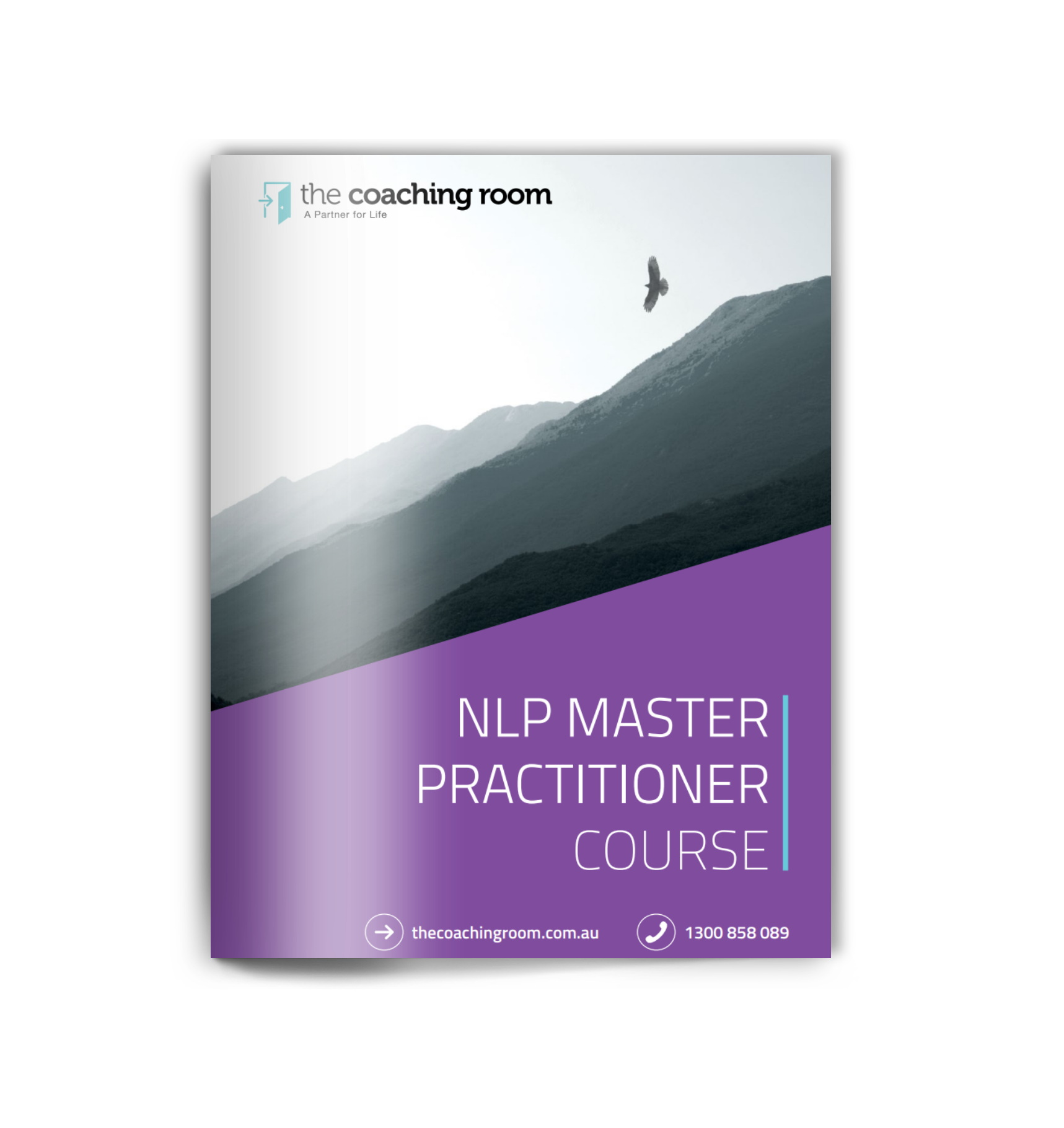 NLP Master Practitioner cover
