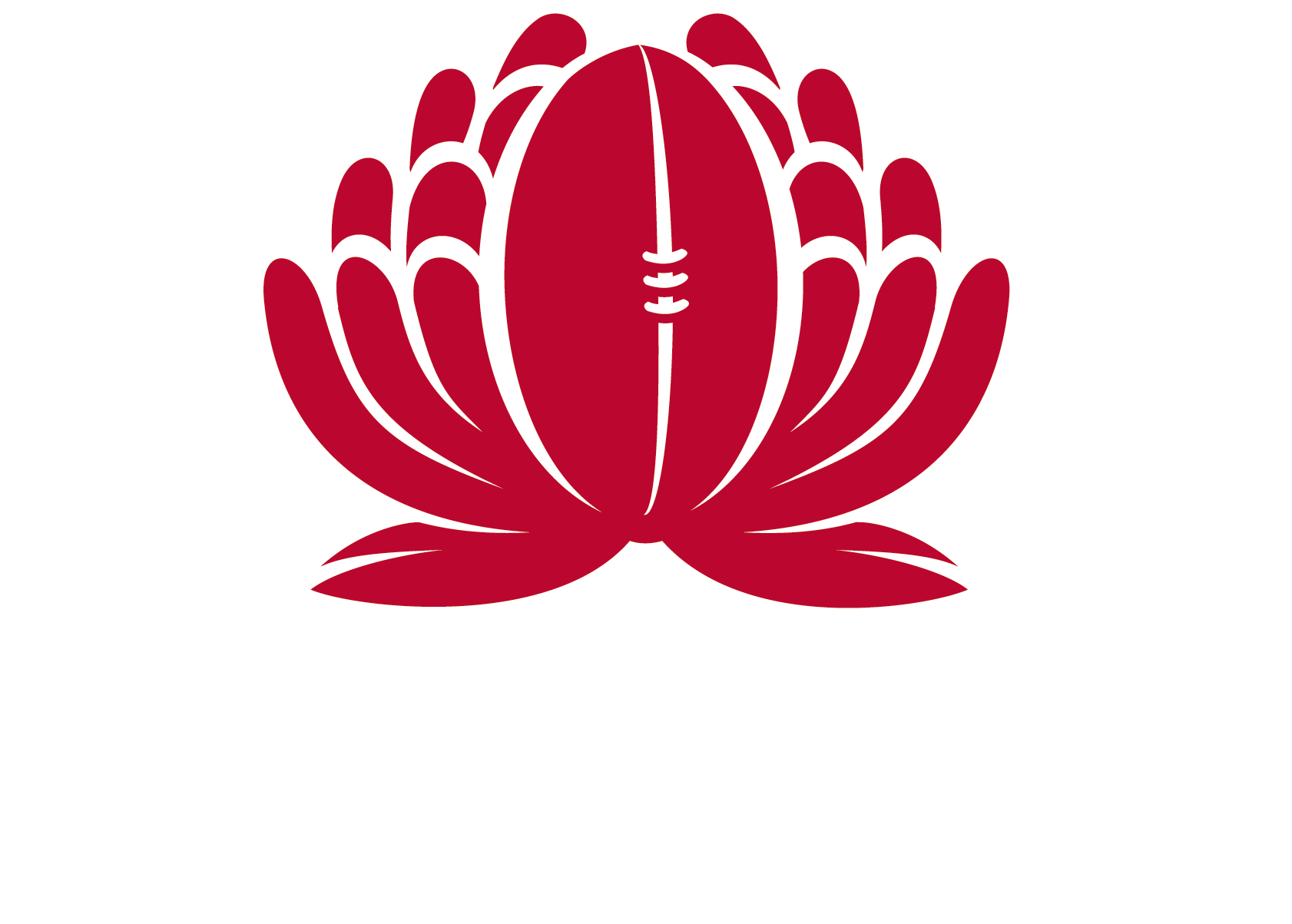 NSWRU-Waratahs-Stacked-Outline-White.png